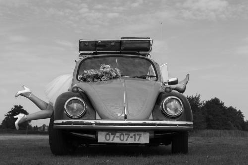 MG 1953-2